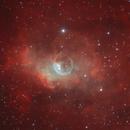 SH2-162 Bubble Nebula SHO,                                Dan Kusz