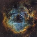 Rosette Nebulas in SHORGB,                                Jeremy Jonkman