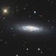NGC 6503,                                Frank Colosimo