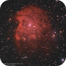 The Monkey Head Nebula,                                RAMI SAADAH