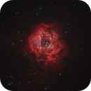Rosette Nebula,                                PeterZelinka