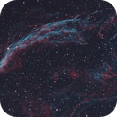 Veil Nebula,                                Seymore Stars