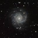 M74,                                pterodattilo