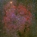 IC1396 wide-field,                                Hata Sung