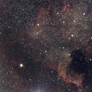 NGC7000: North America Nebula,                                Vipin Kamath