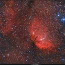 Sh2-101 Tulip Nebula,                                Enrico Scheibel