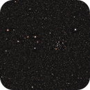 NGC3766,                                Carl Tanner