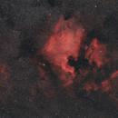 NGC7000,                                Patryk