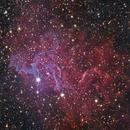 IC405 Flaming Star Nebula,                                Gene