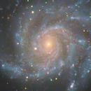 M101 LRGB Quattro 8s,                                SamAndrew