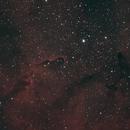 Elephant's Trunk Nebula,                                David Quattlebaum