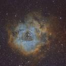 """NGC2237 """"Rosette"""",                                John Massey"""