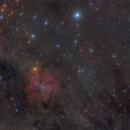 IC 1396 & Sh2-129,                                Maurice Toet