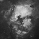 NGC7000 Ultra Wide Field with Samyang 135 @ F2,                                Jocelyn Podmilsak