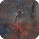The Elephant Trunk Nebula in HOO,                                Wes Higgins