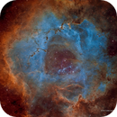 When Roses Aren't Red - APOD February 22, 2018,                                Eric Coles (coles44)