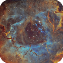 NGC 2237 - Rosette Core in SHO revisited,                                Ariel Cappelletti
