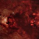 Cygnus Region,                                Will Leverett