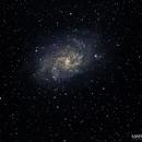 My first M33,                                Eddy9000