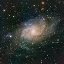 M33,                                Daniel Fournier