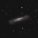 NGC 3628,                                Carsten Dosche
