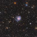 M101 wide field,                                Steed Yu