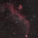 IC 2177 Seagull Nebula,                                Nigel
