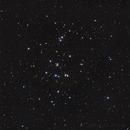 M44 - Praesepe - The Beehive Cluster,                                Roberto Botero
