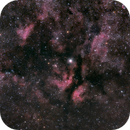 Gamma Cygni,                                Dean MacDonald