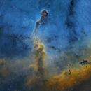 The Elephant Trunk Nebula,                                James E.