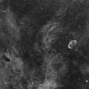 NGC 6888 in Ha,                                Michael Hoppe