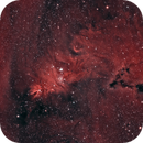 Christmas tree cluster and Cone Nebula,                                Mike Brady