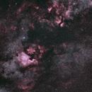 Cygnus wide field : Unmodified Fuji XT30 at f=65 mm in 40 min,                                Andreas Zeinert