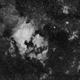 NGC7000 (Mosaic - 3 panels),                                Stéphane RONGERE