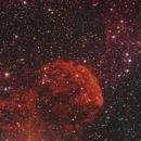 IC443,                                Friesenjung