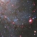 Great Spiral Arm of M33: Close up,                                Rodd Dryfoos