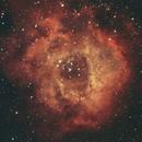 NGC2244 - The Rosette Nebula (Ha & Oiii),                                Gary Sizer