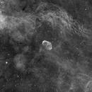 NGC 6888: Crescent Nebula,                                Yizhou Zhang