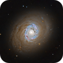 Cat's Eye Galaxy (LRGB, Messier 94),                                Henning Schmidt
