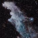 Witch Head Nebula  IC2118,                                M.J. Post