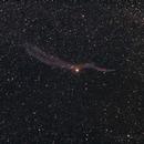 Veil Nebula,                                Michael_Xyntaris