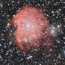 NGC2175 Monkey Head Nebula,                                Michael Finan