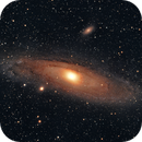 Andromeda for Russell,                                Caspian Ray