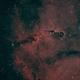 Elephant's Trunk Nebula,                                David Johnson