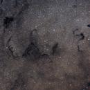 Snake and Scorpion in Ophiuchus,                                Uri Abraham