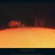 Solar prominance,                                Massimiliano Vesc...