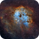 IC 410 - The Tadpoles Nebula,                                Alan Pham