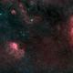 Lion- and Elephant Trunk Nebula (SH2-132 and IC 1396) @ H-HGB,                                Wolfgang Zimmermann