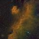 IC2177 Seagull Nebula in SHO Palette,                                niteman1946