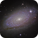 M63 The Sunflower Galaxy,                                Frank Colosimo